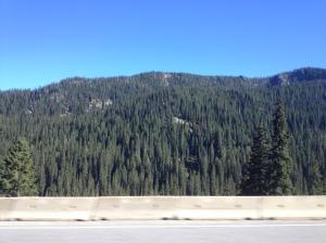 Idaho (1)